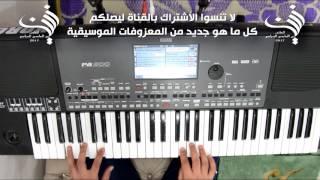 عزف اغنية عم بتعلق فيك شوي للفنانه نانسي عجرم | Audio HD 2017