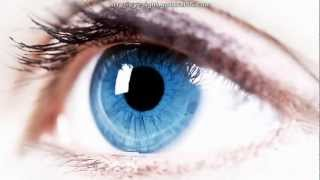 How To Improve Eyesight Fast And Naturally | Bates Method For Eyesight Improvement