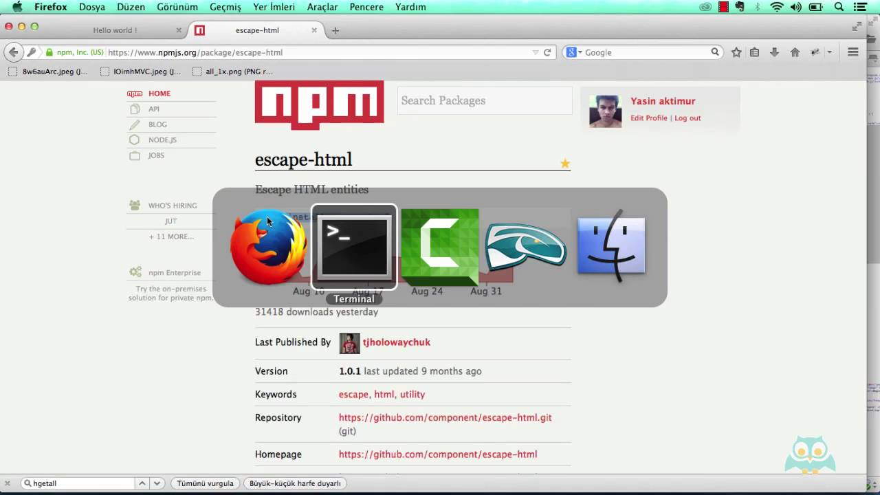 Escape html k t phanesi nedir