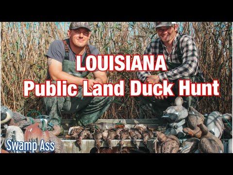 LOUISIANA PUBLIC LAND DUCK HUNT - Louisiana