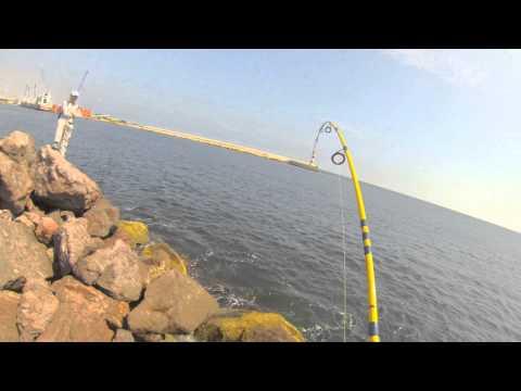 Pesca del Bonito  con equipo ligero/ Eastern Pacific Bonito fishing in Light Game