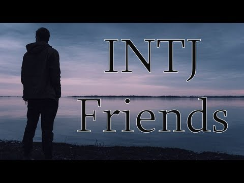 INTJ: Which Types are Likely to be Friends with INTJs