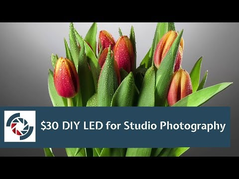DIY LED Lighting for Studio Photography: What you can do with $30 LED bulbs