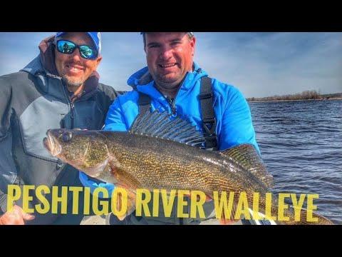 Spring River Walleye Fishing On The Peshtigo With Eric Haataja