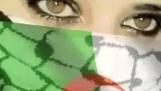 اجمل اغنية جزائرية شيخ كمال نمري kamal nemri