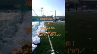 1/23 雪かき編 thumbnail