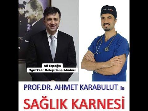 EĞİTİM SİSTEMİ VE İLKÖĞRETİMDE ÖZEL OKULLARIN YERİ  - ALİ TOPOĞLU - PROF DR AHMET KARABULUT