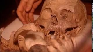 Gambar cover Documentario - I Fenici - Popoli del mare