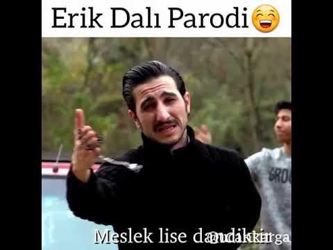 Erik dalı PARODİ-LİSELİLER