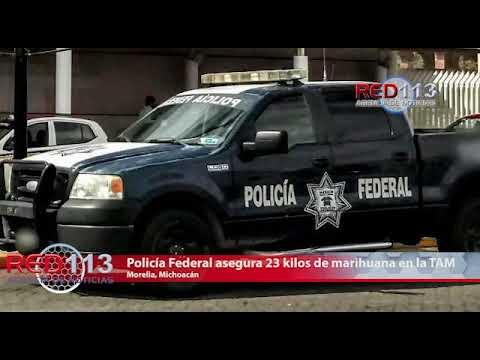 VIDEO Policía Federal asegura 23 kilos de marihuana en la TAM