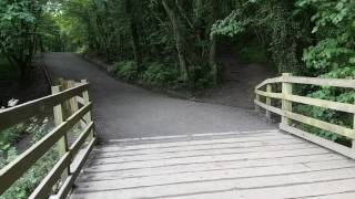 Plessey woods country park, Hartford bridge