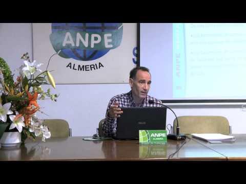 VIDEO PARTE 1 EL CONCURSILLO