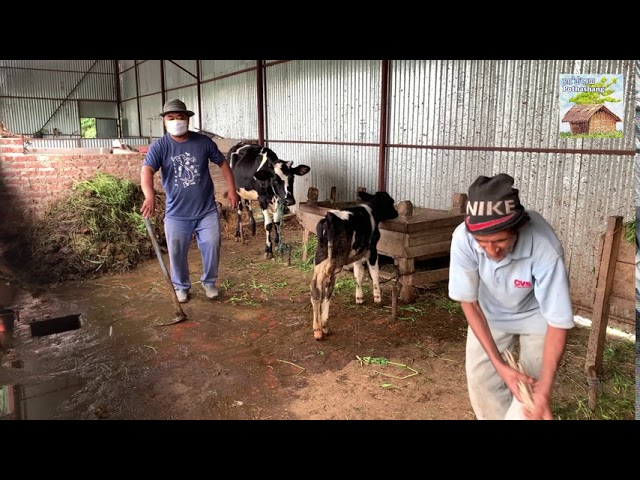 Maniton yearns for self reliance in food production