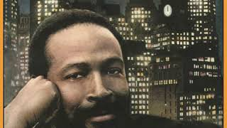 Marvin Gaye - Sexual Healing (High-Quality Audio)