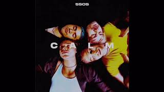 Download Lagu 5 Seconds Of Summer - No Shame 1 Hour MP3