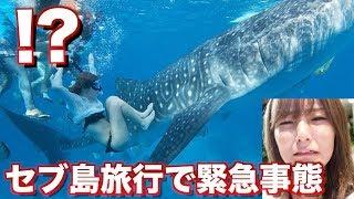 【怖すぎる】海で泳いでたら巨大なサメに遭遇した。。【セブ島】