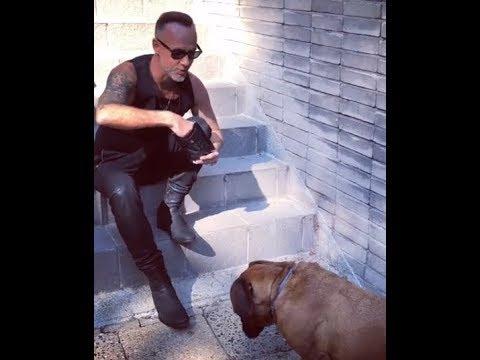 Behemoth release 'God=Dog: Dog Food' named after their new single...