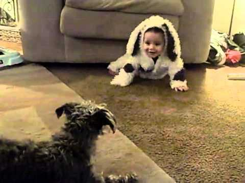 dog thinks baby is a dog
