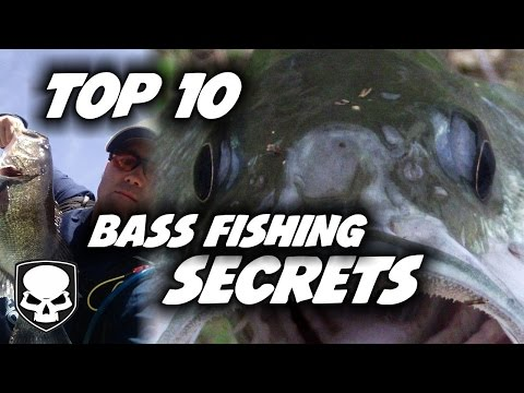 Top 10 Bass Fishing Tricks - for beginners - 2017 - Tips and Tricks for Catching Bass