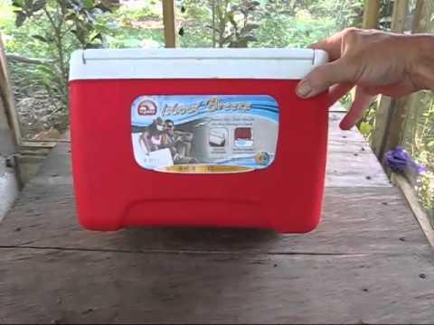 New Igloo Island Breeze 28 QT Diablo Red Ice Cool Box Cooler