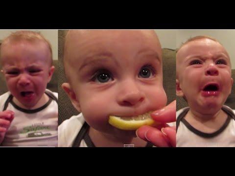 Ekspresi Lucu Bayi Yang Sedang Makan Lemon
