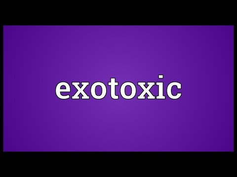 Exotoxic Meaning