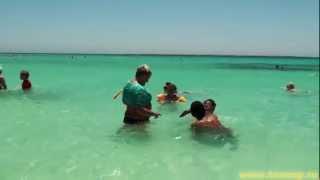 Райский остров на Красном море || Paradise island, Red sea(http://toneup.ru/?p=5547 || отзыв Египет, Красное море, недалеко от Хургады - высадка на острове Paradise., 2013-02-27T08:58:35.000Z)