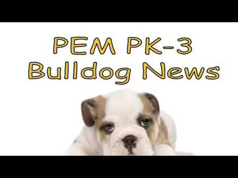 2018-09-28 PEM PK-3 Bulldog News