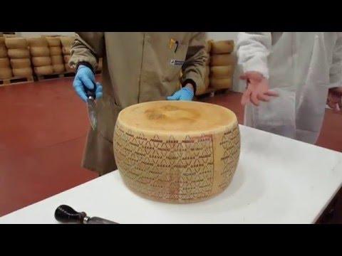 A la découverte du Grana Padano
