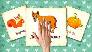 Збірник №7 - 20 хвилин | Картки Домана | Розвиваючі мультики для дітей