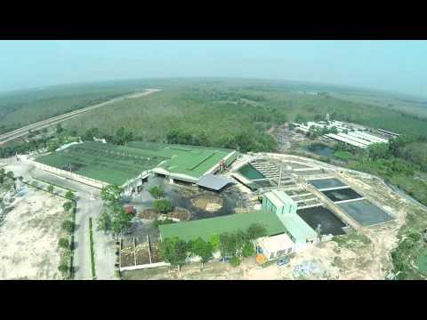 MaiVinh Rubber factory's landscape