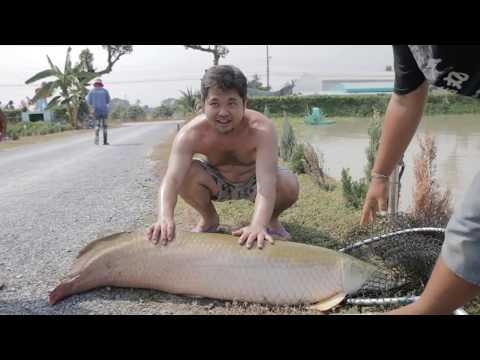 ไปแอบดูญี่ปุ่นถอดเสื้อตกปลาอเมซอนที่ NoomFish456 กัน หุหุ