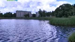 Конаковская администрация возьмется за расчистку берега Донховки