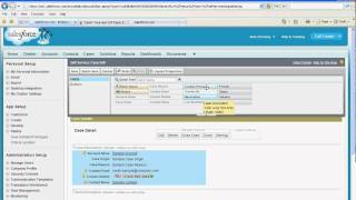 Setting up Self Service Portal in Salesforce com