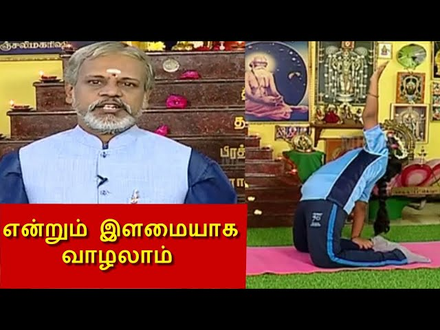 60 வயது வரை இளமையாக வாழ யோகாசனங்கள் ! தேகம் சிறக்க யோகம் | Yoga  Krishnan Balaji  | Mega Tv