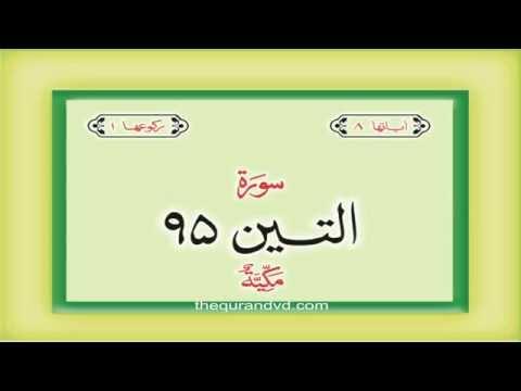 95. Surah  At Tin  with audio Urdu Hindi translation Qari Syed Sadaqat Ali