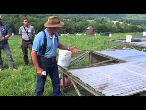 Joel Salatin Talks Pastured Chicken