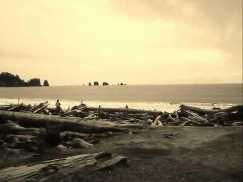 Puscifer - Oceans