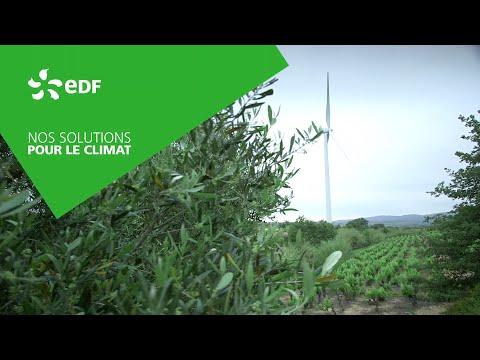Green bond, la finance innove pour les énergies renouvelables
