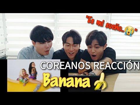 COREANOS REACCIONAN A BANANA - ANITTA, BECKY G [Pandita Chan]