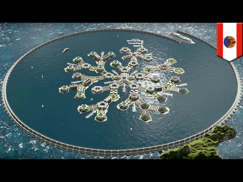 Floating city: World's first seastead to be built in French Polynesia - TomoNews