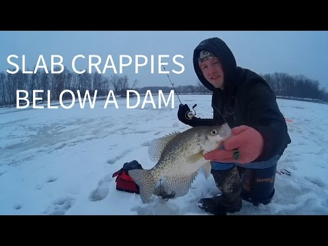 Ice Fishing Below Dam - Catching Slab Crappies in Wisconsin!