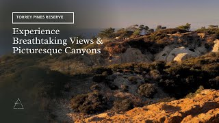 Torres Pines State Natural Reserve