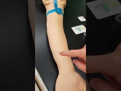 Phlebotomy: The Veins Used For Venipuncture