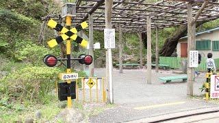 小田原城址公園「こども遊園地」の踏切と豆汽車 thumbnail