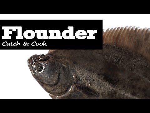 Catch & Cook Flounder UK