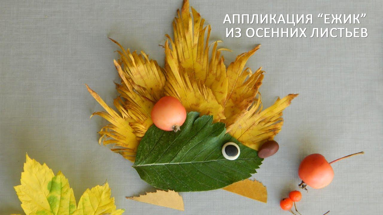 Как сделать ёжика из листьев фото 252