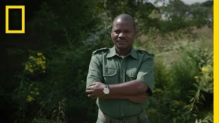 Fighting Wildlife Crime: The Unsung Heroes | National Geographic