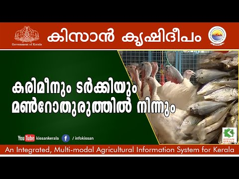 An Integrated Farm With Pearlspot, Turkey, Duck & Vegetables. A Story From Monroe Island, Kollam