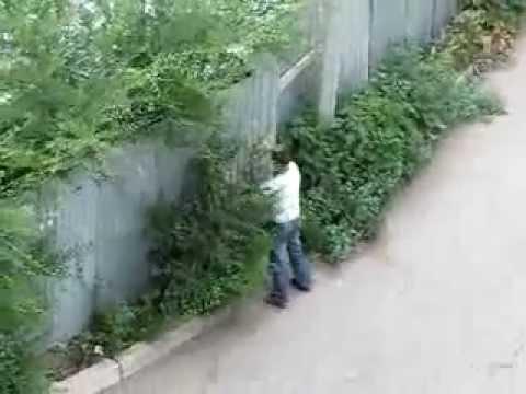 идиот бьется об забор